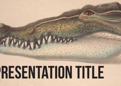 Amphibians. Plantilla Power point Gratis, tema Google Slides y Keynote