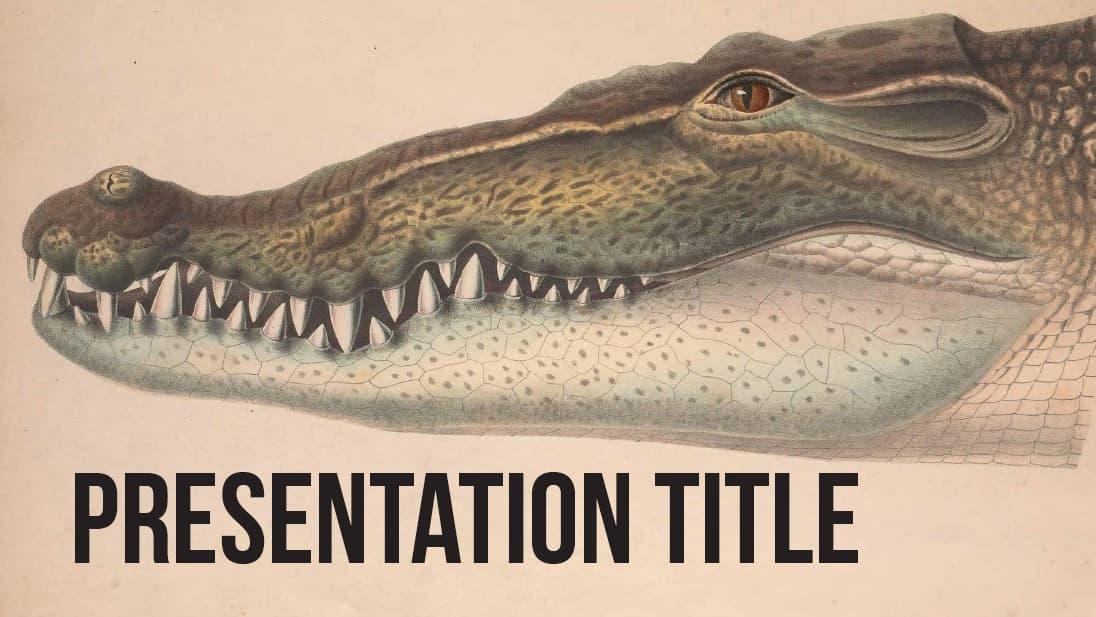 Amphibians slidesforeducation template